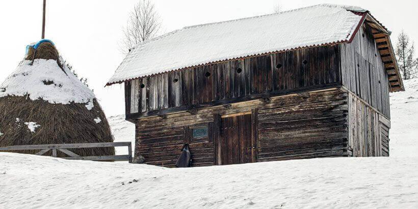 sneeuwwandelen in het apuseni gebergte roemenie (1)