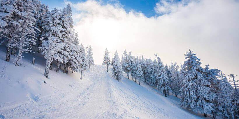 sneeuwwandelen in het apuseni gebergte roemenie (4)