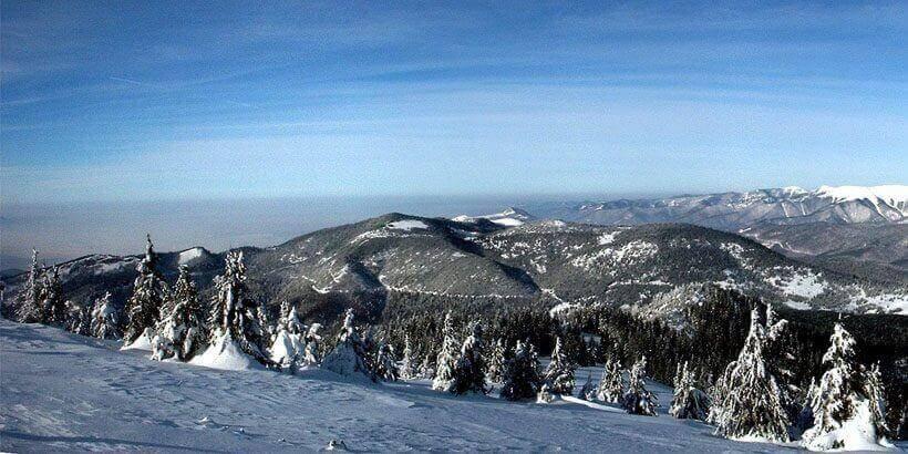 sneeuwwandelen in het apuseni gebergte roemenie (5)