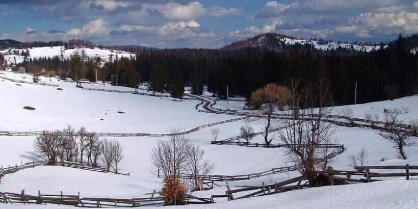 sneeuwwandelen in het apuseni gebergte roemenie (6)