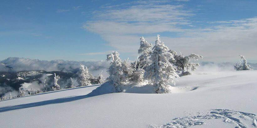 sneeuwwandelen in het apuseni gebergte roemenie (7)