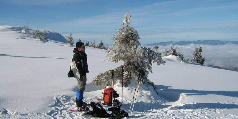 sneeuwwandelen in het apuseni gebergte roemenie (8)